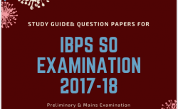 Question paper so pdf ibps